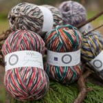 West Yorkshire Spinners Signature 4ply - Country birds