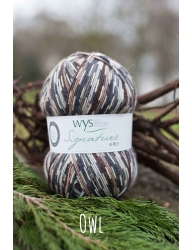 West Yorkshire Spinners Signature 4ply - owl 100g