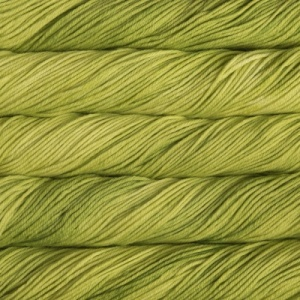 Malabrigo Rios 100g - Apple Green