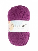 WYS ColourLab DK 100g - Perfectly Plum
