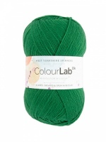 WYS ColourLab DK 100g - Bottle Green