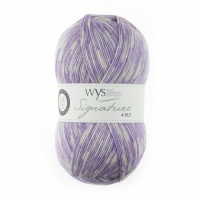 WYS Signature 4ply Florist Collection 100g - Delphinium
