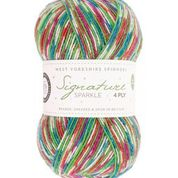 WYS Signature 4ply Christmas Sparkle - Fairy Lights