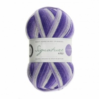 WYS 4ply Winwick Mum Collection 100g - Hidden Gem