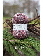 West Yorkshire Spinners Signature 4ply - Bullfinch 100g