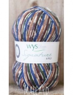 West Yorkshire Spinners Signature 4ply - Mallard 100g